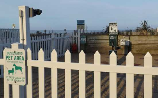 10300 Coastal Hwy #503 - Photo 29