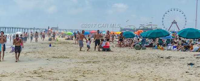 10002 Coastal Hwy #507 - Photo 37