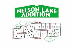 Lot 9 Blk 2 Nelson Lake Road - Photo 1