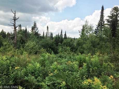 Xx N. Branch Carroll Trail - Photo 1