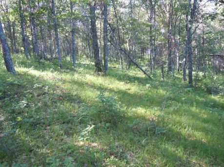 Lot 4 Red Fox Trail - Photo 9