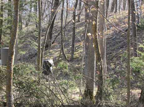 14945 Cedar - Photo 9