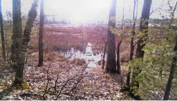 12595 W Twin Lake Road - Photo 17