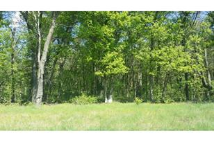 Lot 2 Blk 2 190th Street Nw - Photo 1