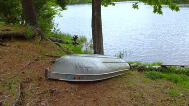 8631 N Blue Gill Lake Road - Photo 5
