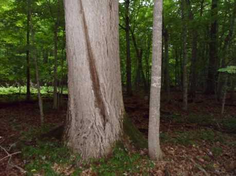 L5 B1 1st Ni Gig Trail Drive - Photo 9