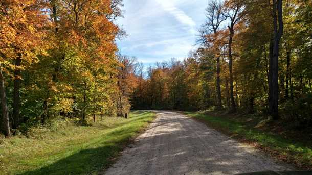 L3 B2 1st Ni Gig Trail Drive - Photo 5