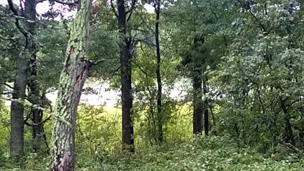 Tbd Lot 1 Preserve Circle - Photo 4