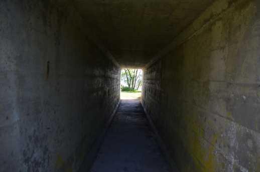 Xxxx Shields Court - Photo 9