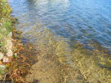 11995 Milinda Shores Road - Photo 3