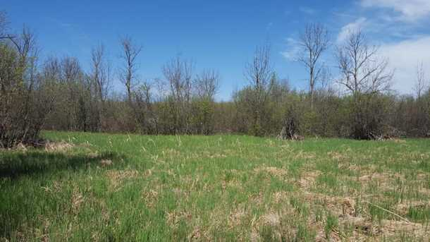 80 Acre 310th Avenue - Photo 11