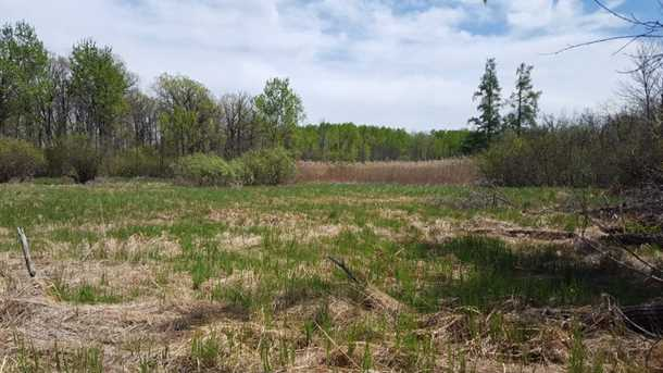 80 Acre 310th Avenue - Photo 9