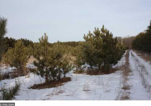 Lot 15 Tree Top Trail - Photo 3