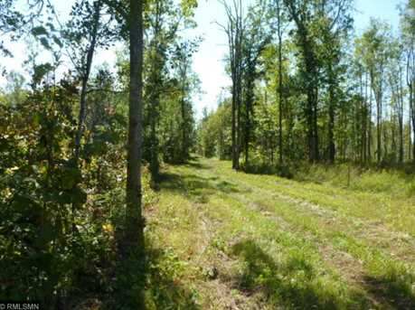 Tbd County Road 333 - Photo 3