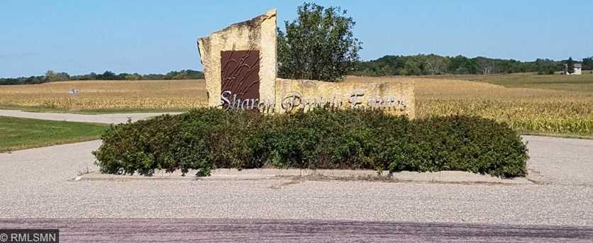 35746 Sharon Prairie Drive - Photo 3