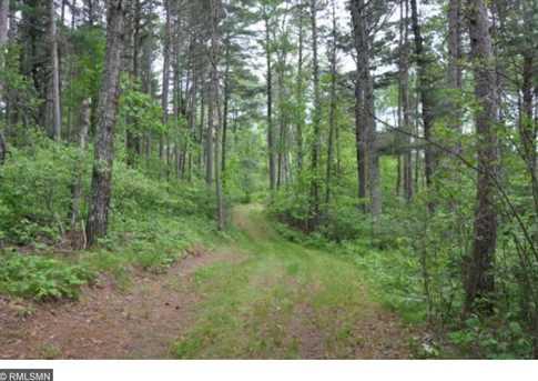 12816 Ecton Trail - Photo 19