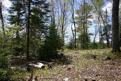 Lot Whitcomb Trail - Photo 3