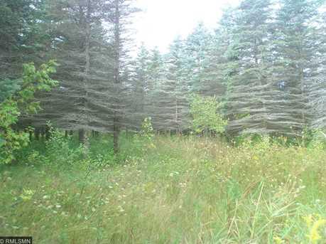 1634 Majestic Pines Trail - Photo 3