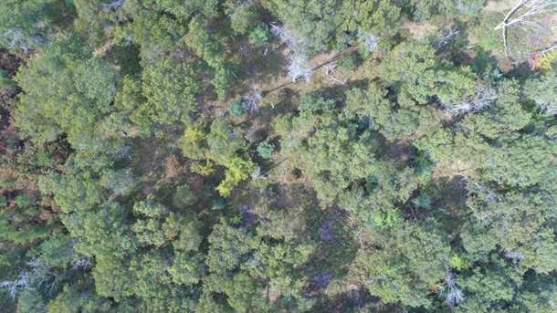 6 52 Pleasant Acres Trail - Photo 3