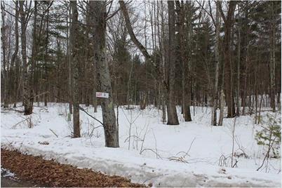Lot 3 Hidden Woods Dr - Photo 1