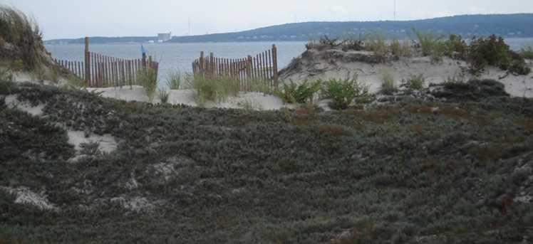 264 Saquish Beach - Photo 3
