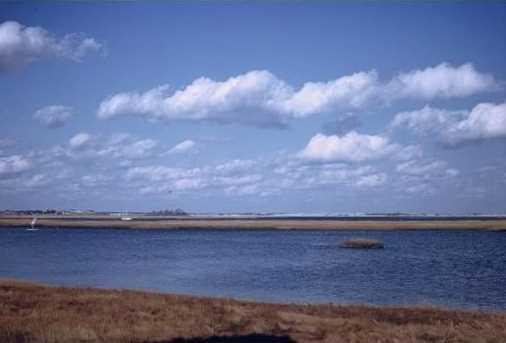 16 Lufkin Point Ln - Photo 1