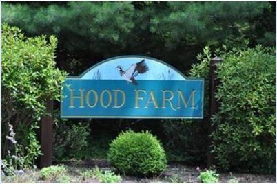 20 Hood Farm Road - Photo 1