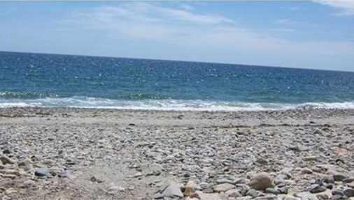 111 Humarock Beach - Photo 1
