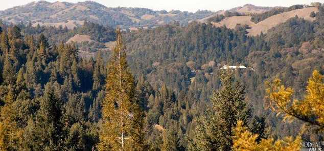 12450 Cloud Ridge Road - Photo 17
