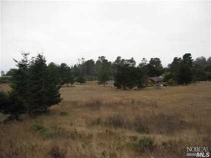 15350 Forest View Road - Photo 3