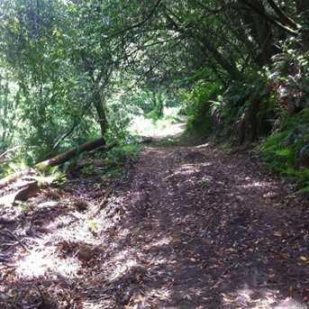 1690 Salmon Creek Road - Photo 9