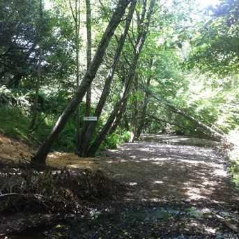 1690 Salmon Creek Road - Photo 7