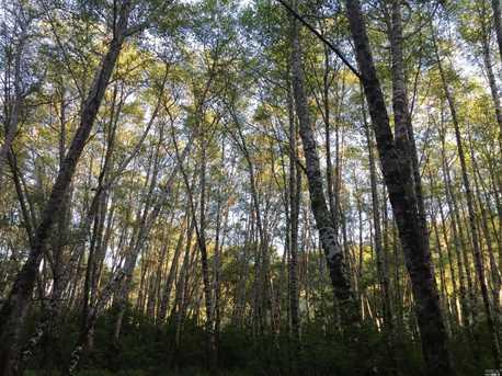 29100 Camp 2 Ten Mile Road - Photo 11