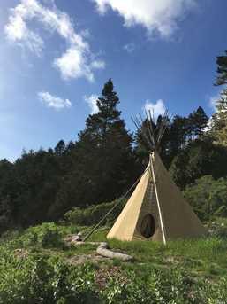 29100 Camp 2 Ten Mile Road - Photo 31