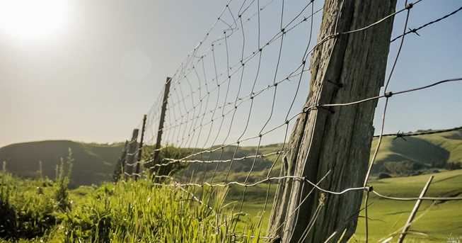 3560 Miners Trail - Photo 11