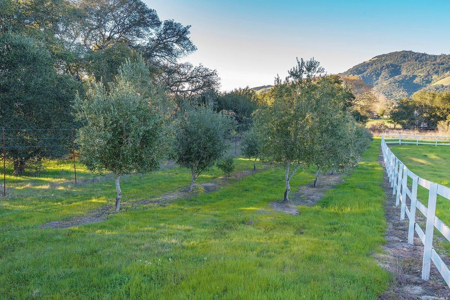 Additional photo for property listing at 200 Bottasso Court  SANTA ROSA, CALIFORNIA 95404