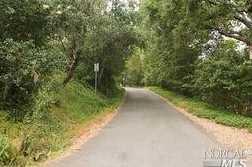 1605 Ronne Drive - Photo 7