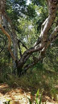 580 Redwood Rd - Photo 11