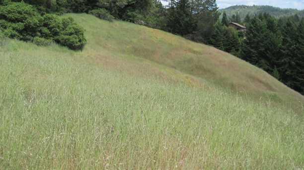 12901 Clow Ridge Road - Photo 7