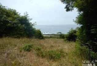 41301 Seascape Drive - Photo 9
