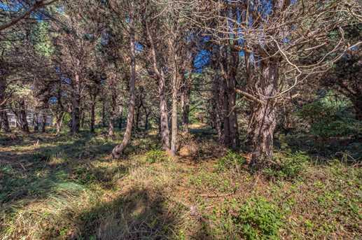 41202 Deer Trl - Photo 5