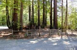 45640 Pacific Woods Road - Photo 3