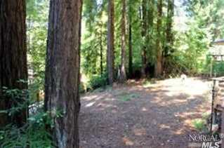 45640 Pacific Woods Road - Photo 23