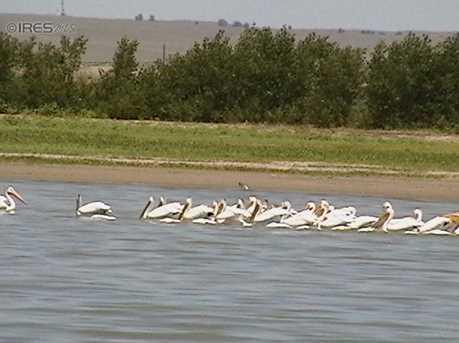 6 Pelican Dr - Photo 1