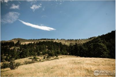 17556 Red Canyon Ranch Rd - Photo 1