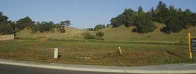 9 Fox Borough Drive - Photo 5