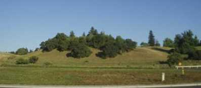 9 Fox Borough Drive - Photo 4