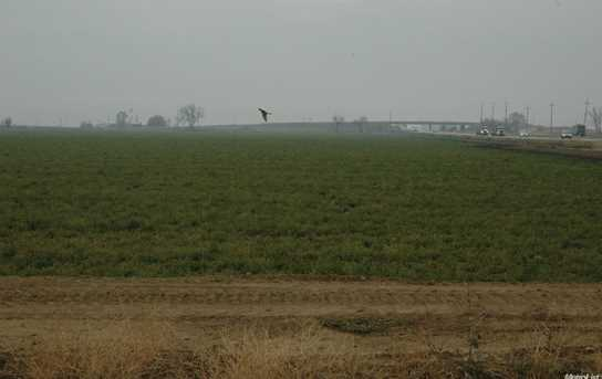 0 Interstate 505 - Photo 7