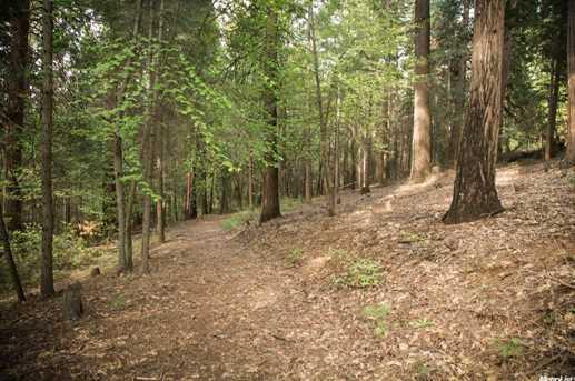 4220 Pegasus Trail - Photo 5