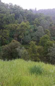 3 Acres Cedar Ravine - Photo 3